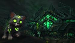 Möt Mischief – WoWs nya pet