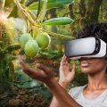 VR för flera olika typer av spel